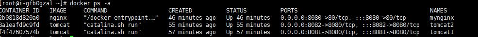Docker常用命令-TestGo